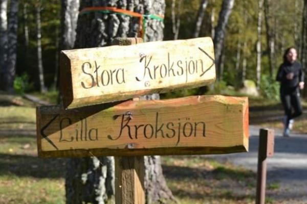 Wooden signs in the nature reserve